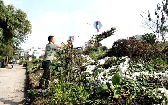 Hà Nội ngày 30 Tết: Đào, quất bung nở nhưng ít người mua, hoa tươi bỏ thối cả đống - Ảnh 8.