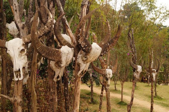 Bí ẩn: Ngôi làng 400 tuổi của bộ lạc nguyên thủy cuối cùng ở Trung Quốc bị cháy rụi - Ảnh 5.