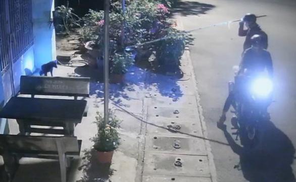Video cẩu tặc rọi đèn, chích điện trộm chó trong 15 giây - Ảnh 2.