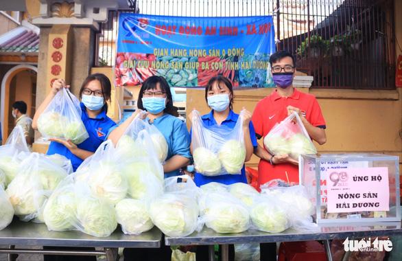 Người trẻ Sài Gòn thuê xe ra tận Hải Dương mua bắp cải về bán giá... 0 đồng - Ảnh 4.