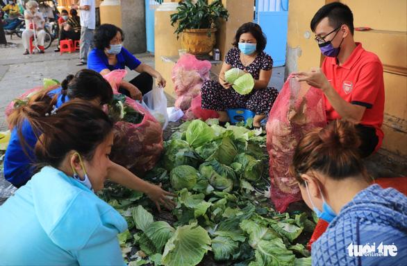 Người trẻ Sài Gòn thuê xe ra tận Hải Dương mua bắp cải về bán giá... 0 đồng - Ảnh 6.