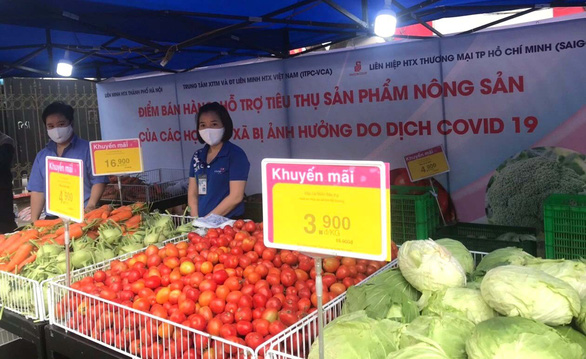 Nhiều siêu thị giải cứu nông sản Hải Dương - Ảnh 1.