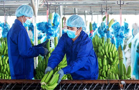 Hoàng Anh Gia Lai sửa kết quả kinh doanh, chuyển từ lãi trăm tỉ sang lỗ hơn 5.000 tỉ đồng - Ảnh 1.