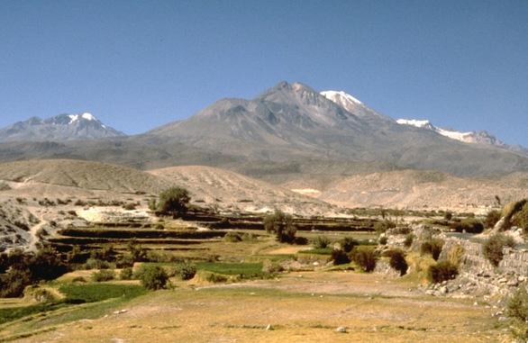 Phát hiện loài bò sát sống được ở nơi cao nhất thế giới - Ảnh 2.