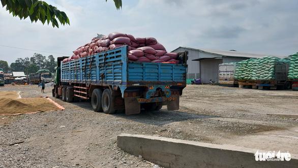 Hàng hóa qua lại Việt Nam - Campuchia vẫn thông suốt giữa dịch - Ảnh 8.