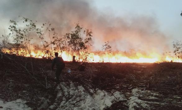 Rừng trồng ven biển bốc cháy ngùn ngụt, hơn 100 người chữa cháy - Ảnh 1.