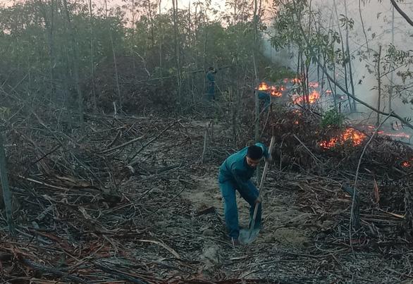 Rừng trồng ven biển bốc cháy ngùn ngụt, hơn 100 người chữa cháy - Ảnh 3.