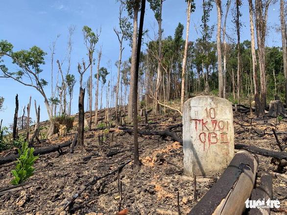 Mở rộng điều tra vụ án làm ngơ cho lâm tặc phá rừng tại Đắk Lắk - Ảnh 1.
