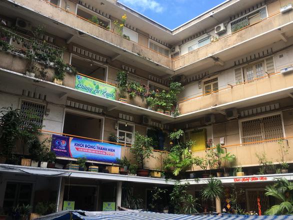 TP.HCM khởi động Tháng thanh niên: Tạo mảng xanh cho chung cư, làm đẹp các hẻm - Ảnh 2.