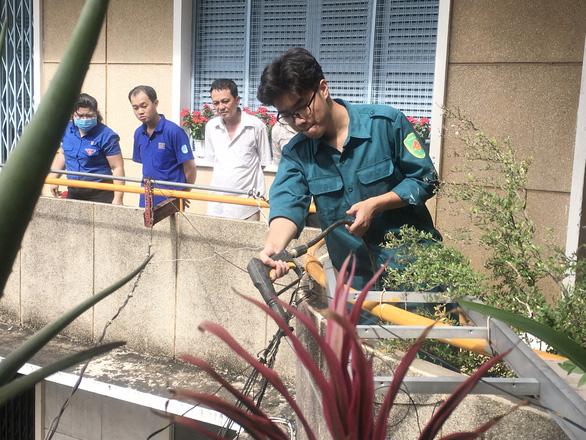 TP.HCM khởi động Tháng thanh niên: Tạo mảng xanh cho chung cư, làm đẹp các hẻm - Ảnh 1.