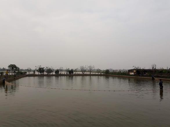 Cá chép đỏ vượt cổng làng phục vụ tết ông Công, ông Táo - Ảnh 2.