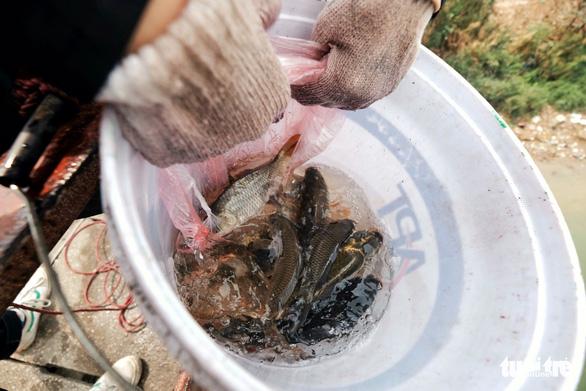 Nhóm bạn trẻ 8 năm giúp người Hà Nội thả cá chép, không thả túi nilông - Ảnh 5.