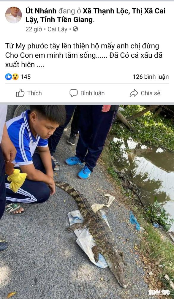 Thực hư chuyện cá sấu xuất hiện trên sông ở Tiền Giang - Ảnh 1.