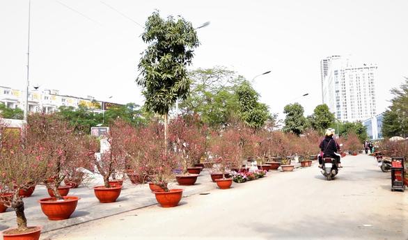 24 tết, người bán hoa tại Hà Nội xả hàng, giảm giá, chỉ mong huề vốn - Ảnh 3.