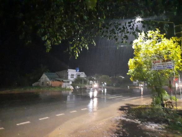 Cơn mưa vàng giải nhiệt vùng quê Bình Phước - Ảnh 1.