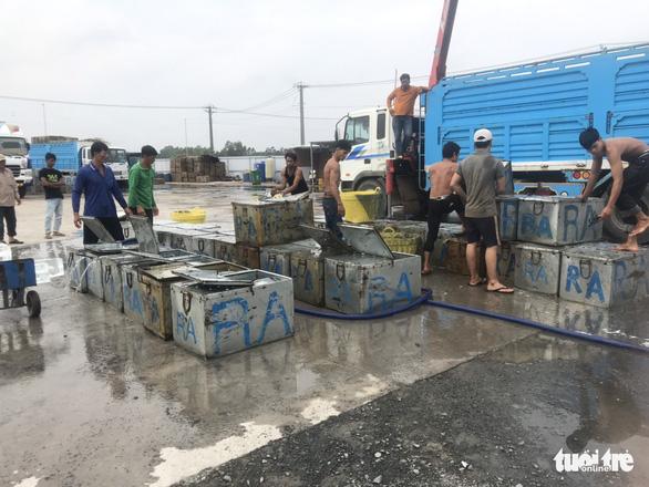 Campuchia cho phép nhập khẩu trở lại 4 loài cá từ Việt Nam - Ảnh 2.