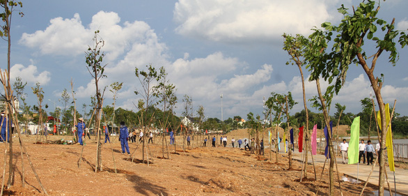 Bình Phước bỏ 54 tỉ đồng trồng 1 triệu cây xanh trong năm 2021 - Ảnh 1.
