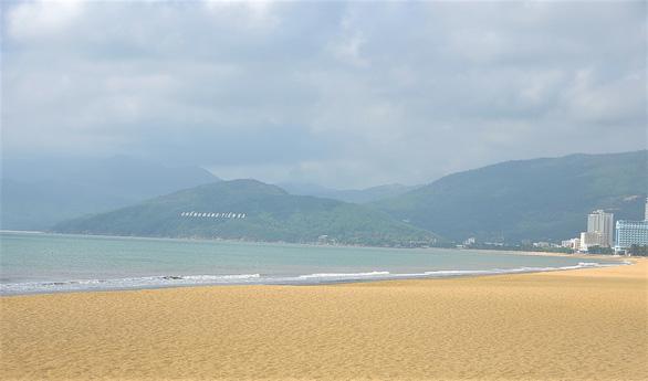 Phá rừng để gắn tên Thị Xã Hoài Nhơn: Sẽ trồng cây, phủ xanh lại rừng - Ảnh 5.