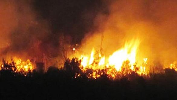 Lằn ranh sinh - tử - Kỳ 1: Suýt chết giữa biển lửa U Minh - Ảnh 1.
