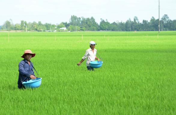 Phân DAP khan hàng, sốt giá kéo dài: Họp khẩn với các nhà sản xuất trong nước - Ảnh 1.