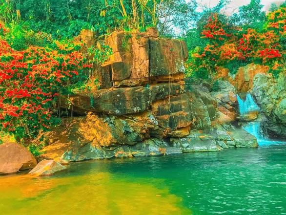 Suối Tà Má rực rỡ hoa trang rừng chưa bao giờ đẹp như năm nay - Ảnh 7.