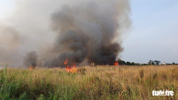 Cháy lớn tại đồng cỏ trong Khu công nghệ cao gần Samsung - Ảnh 2.