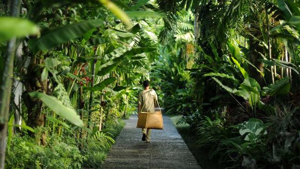 Thiên đường nghỉ dưỡng Bali giữa lòng Ecopark - Ảnh 1.