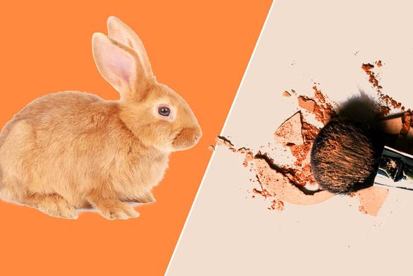 Làn sóng' cấm thử nghiệm mỹ phẩm trên động vật - Ảnh 1.