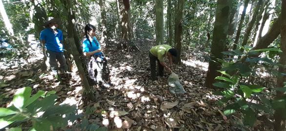 Thả khỉ đuôi lợn và trăn gấm do người dân giao nộp về rừng tự nhiên - Ảnh 2.