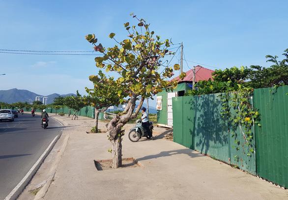 Cưỡng chế thu hồi dự án lấn vịnh Nha Trang, lấy đất xây công viên - Ảnh 2.