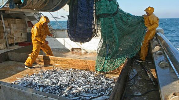 Các đội tàu cá Trung Quốc phát thải khí CO2 hàng đầu thế giới - Ảnh 3.