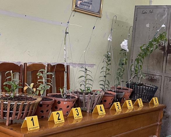 Hai nghi phạm chuyên lên mạng tìm nhà có lan đột biến để leo vô trộm - Ảnh 2.