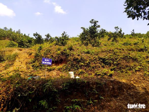 Hà Tĩnh: Nhiều cán bộ xã được giao, cho 'mượn' đất rừng sai quy định - Ảnh 3.
