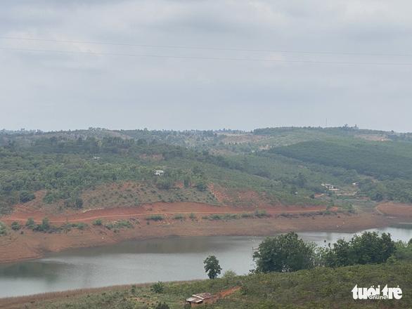 UBND TP Gia Nghĩa chưa biết chuyện phá 5.600m2 rừng phòng hộ và ai là thủ phạm - Ảnh 2.