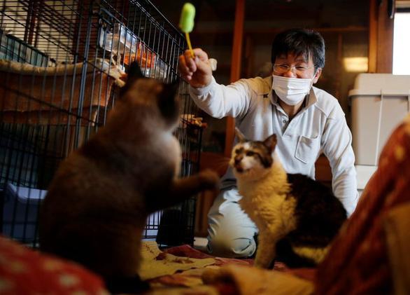 10 năm thảm họa Fukushima: Người ở lại vùng nhiễm phóng xạ giải cứu mèo - Ảnh 1.