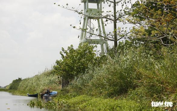 2 dự án khôi phục rừng tràm U Minh Thượng: Đụng đâu thấy sai nấy - Ảnh 1.