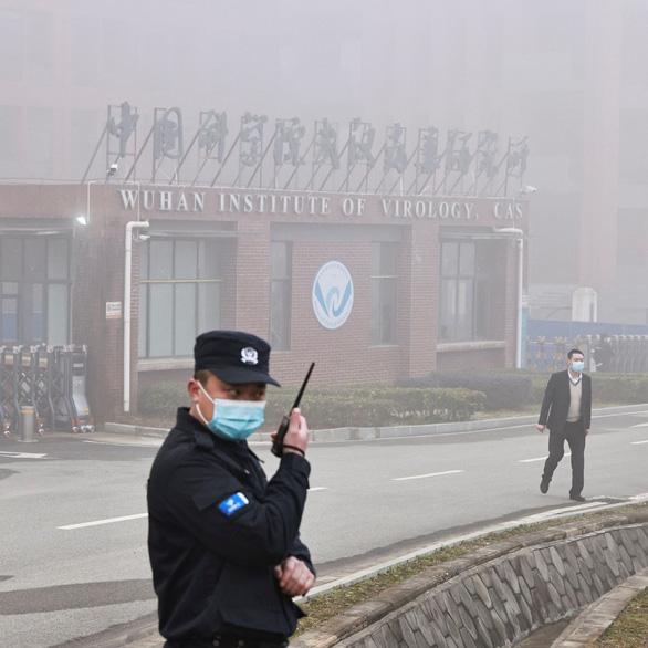 WHO bất ngờ hủy công bố báo cáo sơ bộ về nguồn gốc virus corona ở Vũ Hán - Ảnh 1.