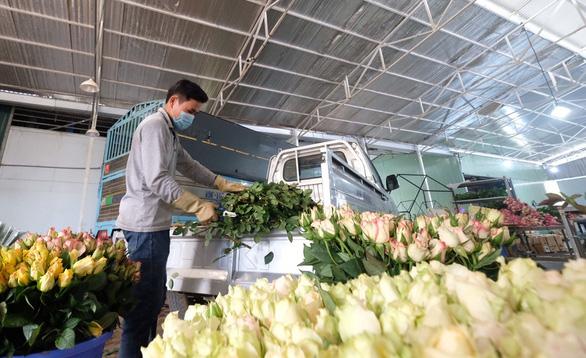 Hoa hồng Đà Lạt tăng giá gấp 3 lần dịp 8-3 - Ảnh 1.