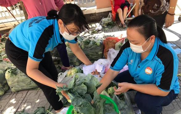 Người Sài Gòn bán bắp cải, su hào giúp nông dân Hải Dương - Ảnh 1.