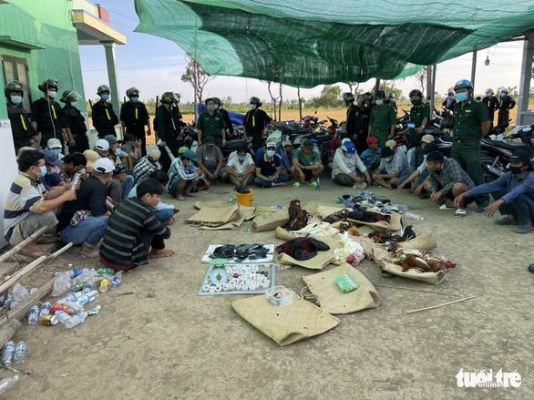 Che bạt để đá gà quy mô lớn ở Tiền Giang, 42 người bị bắt tại trận - Ảnh 3.