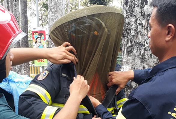 Giúp trường học lấy tổ ong, một cảnh sát chữa cháy bị ong chích nhập viện - Ảnh 1.