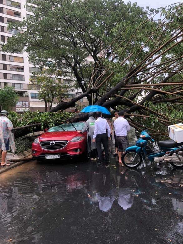 TP.HCM: Mưa to gió lớn, cây ngã đè xe máy làm 2 người bị thương - Ảnh 5.
