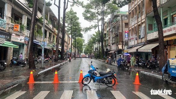 TP.HCM: Mưa to gió lớn, cây ngã đè xe máy làm 2 người bị thương - Ảnh 2.