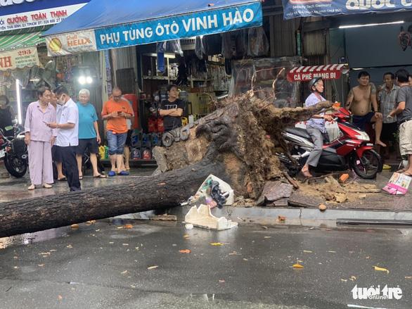 TP.HCM: Mưa to gió lớn, cây ngã đè xe máy làm 2 người bị thương - Ảnh 3.