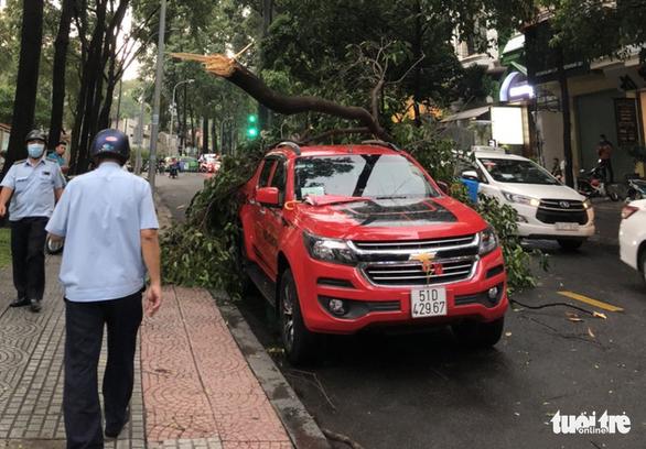 Mưa Sài Gòn chiều 15-4, nhiều đường ngập, cành sao lớn gãy lìa, đè bẹp nóc xe hơi - Ảnh 2.