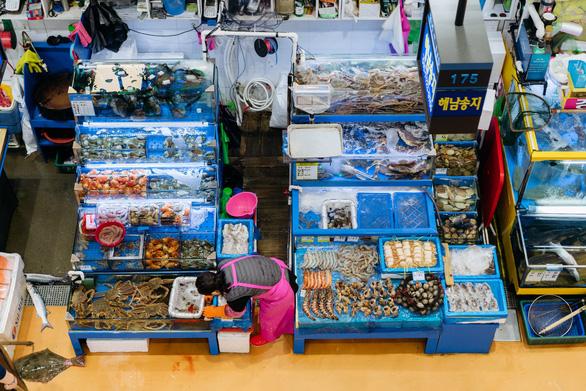 Nhà buôn cá Hàn phản đối Nhật xả 1 tỉ tấn nước thải Fukushima ra biển - Ảnh 1.