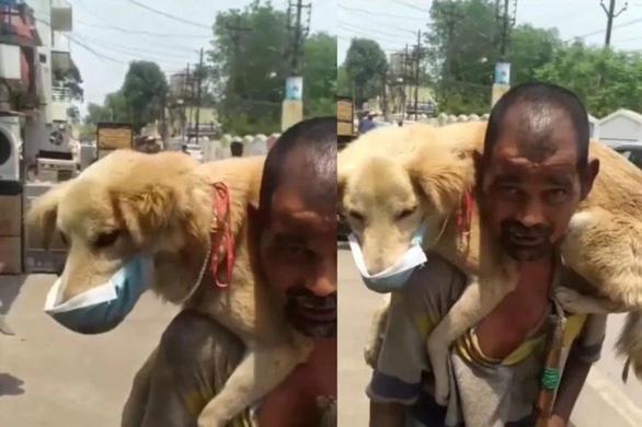 Mạng xã hội Ấn dậy sóng vì một người nghèo nhường khẩu trang duy nhất cho chó  - Ảnh 1.