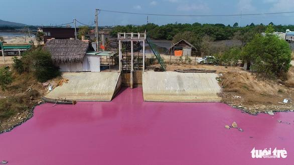 Đầm nước chuyển màu ở Bà Rịa - Vũng Tàu: Phạt, đình chỉ doanh nghiệp xả thải - Ảnh 2.