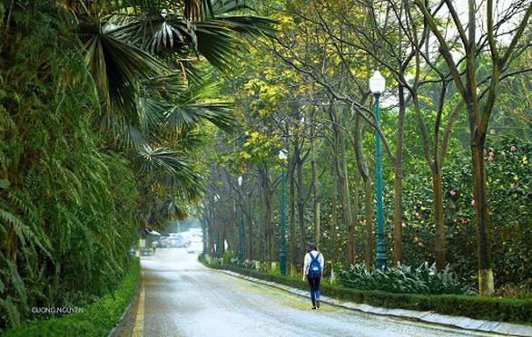 Cung đường chạy marathon đẹp như mơ tại Ecopark - Ảnh 3.