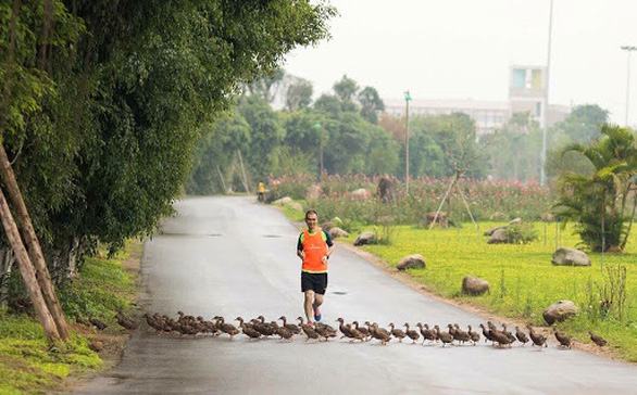 Cung đường chạy marathon đẹp như mơ tại Ecopark - Ảnh 4.